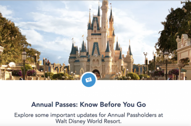 Update! Disney Launched A New Annual Passholder Webpage With New Information on the Reservation System