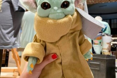 Spotted: Baby Yoda Plush Reappears In Disney Springs!