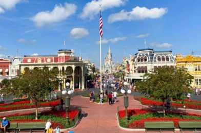 5 Things You Need To Know If You're Planning to Go To Disney World the Day it Reopens
