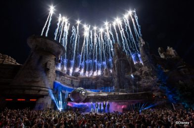 """Happy Birthday, Galaxy's Edge! Here's What's Happened in ONE FULL YEAR Of Disney's """"Star Wars Lands"""""""