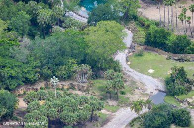 Aerial Photos Taken During Closure Give a Bird's Eye View of Kilimanjaro Safaris
