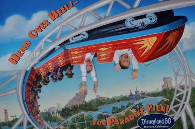 The Lasting Effects of a Disney Vacation on Children and Families