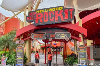 The Biggest Challenges We Faced At Our First Day Back at Universal Studios!