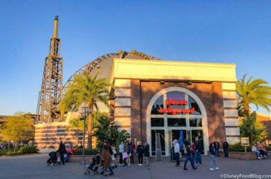Review! Are Killer Fries Enough to Make Us Love Planet Hollywood in Disney World?