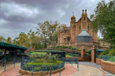 So What's the REAL Backstory of Disney World's Haunted Mansion Residents?