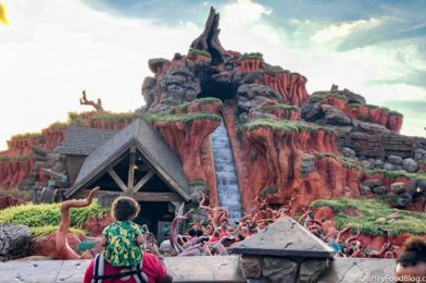 DFB Video: 8 Things That Were Too Much for Disney World Guests!