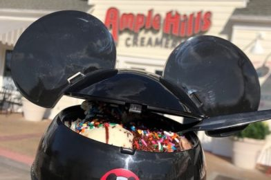 Craving Ice Cream From Disney World? Ample Hills Creamery Is Now Shipping NATIONWIDE!