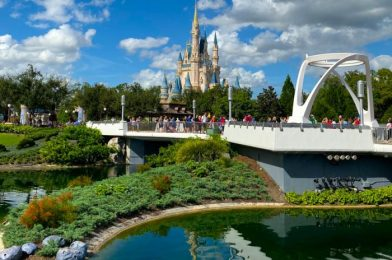 NEWS! Disney World's Park Pass Reservation System Is Live! We Have All the Need-to-Know Details!