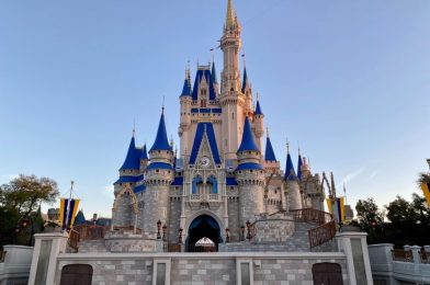 Disney College Program is Not Likely to Restart Soon, According to Union