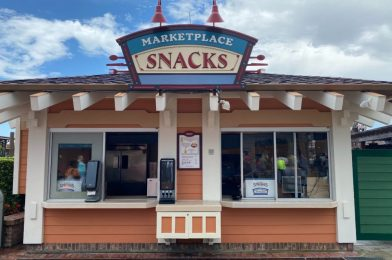 PHOTOS: Even More Snack Kiosks and The Spice & Tea Exchange Reopens at Disney Springs