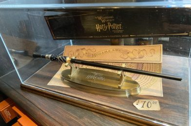 PHOTOS: The Wizarding World of Harry Potter Collector's Edition 2020 Wand Now Available at Ollivander's Wand Shop in Universal Studios Florida