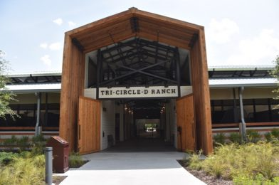 Tri-Circle-D Ranch at Disney's Fort Wilderness Campground Opens to Resort Guests – Photos & Video (& New P&J's Southern Takeout Procedures)