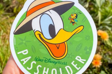 NEWS: Some Disney World Annual Passes Received an Extension Today