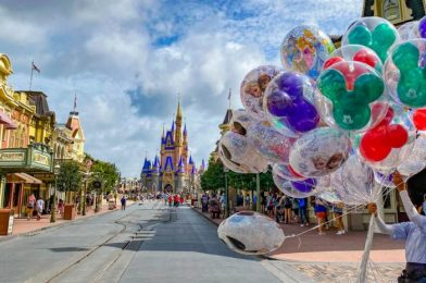 5 Things Nobody Told Us Before We Went Back to Disney World