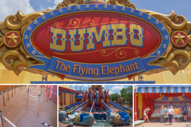 PHOTOS: Dumbo the Flying Elephant Reopens With No Indoor Playground at the Magic Kingdom