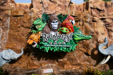 Rainforest Cafe Now Reopened at Disney Springs with Limited Menu