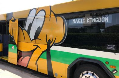 We Caught a Glimpse of a NEW Eco Coach Bus in Disney World!