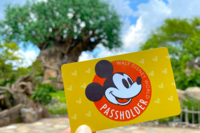 Walt Disney World Resort Annual Pass Sales Temporarily Suspended