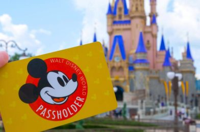 Walt Disney World Annual Passholders Can Purchase Individual Tickets to Obtain Additional Theme Park Reservations; Amount Paid to be Used Towards Future Renewal