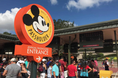 Walt Disney World Now Processing 4 Months of Payments at Once for Annual Passholders on Monthly Plan