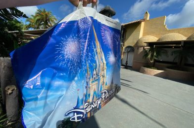 Walt Disney World Theme Parks Not Offering Merchandise Pickup or Resort Hotel Delivery During Phased Reopening