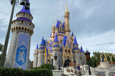 Guide to Wearing a Face Mask at Walt Disney World – Tips and Suggestions