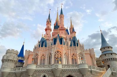 Former Walt Disney World Cast Member Accused of Stealing Over $100,000 with Fraudulent Refunds