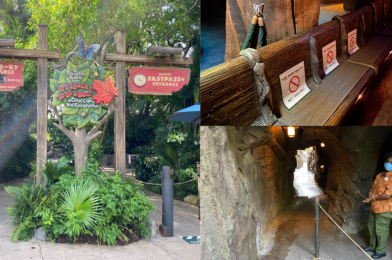 """PHOTOS: """"It's Tough to be a Bug!"""" Reopens With Hand Sanitizing Stations and Social Distancing at Disney's Animal Kingdom"""