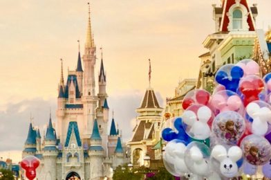 9 Questions You Should Always Ask on a Disney World Vacation