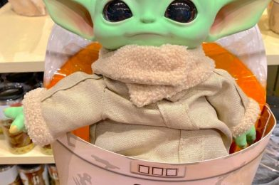 Calling All Disney World Hotel Guests and Annual Passholders! Help Us Solve The Mystery of The NEW Baby Yoda MagicBand!