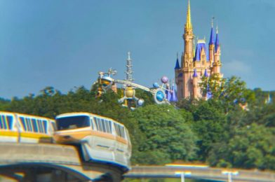 The 8 Most Confusing Things In Disney World Since It Reopened