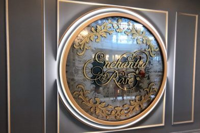 Is Disney World's Enchanted Rose Lounge as Enchanting as We Remember? Read Our Latest Review!