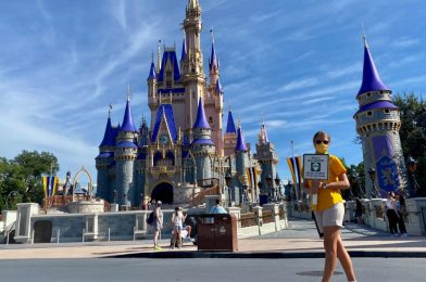PHOTO REPORT: Magic Kingdom 8/18/20 (More New Halloween Merchandise, New Social Distancing Measures, Reasonable Wait Times, and More)