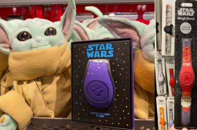 """PHOTOS: NEW Limited Release and Limited Edition Baby Yoda """"The Child"""" MagicBands Arrive at Walt Disney World"""