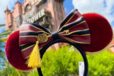 Our Jaws DROPPED When We Saw Disney's New Tower of Terror Bellhop Dress ONLINE!