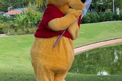 Celebrate Pooh Bear's Birthday With This NEW Citizen Watch in Disney World!