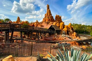 Could These Magic Kingdom Permits Point to Potential Ride Refurbishments?