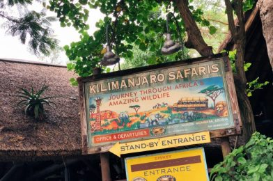 The Best Time of Year for Kilimanjaro Safaris is Here!