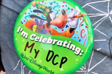 Hey Disney World College Program 2020 Participants, You're Gunna Want to See This!