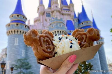 Photos and Review! This Pumpkin Spiced Shake in Disney World Is Gourd-geous!