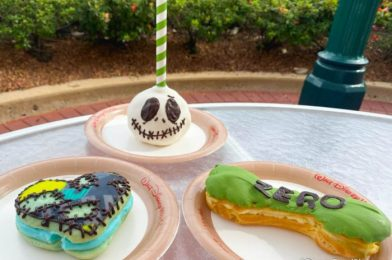 Review! There's a NEW Zero-Inspired Nightmare Before Christmas Treat in Disney World