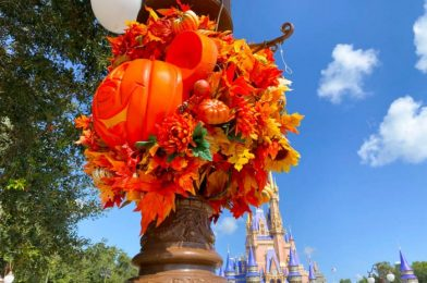 Photos and Videos: Look at the Halloween Crowds in Magic Kingdom Today!