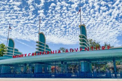 NEWS: Update on California's Theme Park Guidelines Set to Be Shared TOMORROW