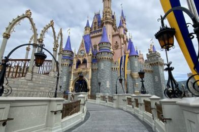 NEWS! TWO Disney World Attractions Evacuated After Small Fire!