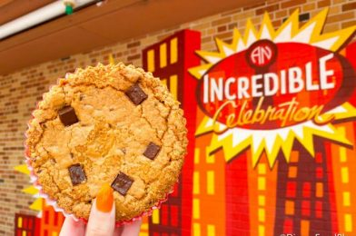 Num Num Cookies Are Finally BACK at Disney's Hollywood Studios!