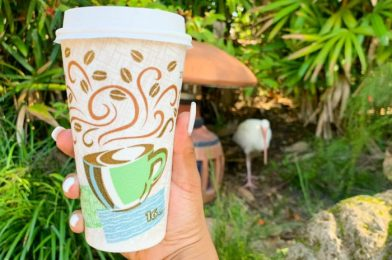 Review! It's Time Once Again for Irish Coffee in Disney's Animal Kingdom