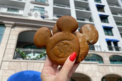 Review! An EXCLUSIVE Gingerbread Recipe Has Been Created for Disney's Riviera Resort!