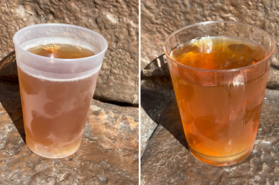 REVIEW: Holiday Beverages in the English Garden at the Taste of EPCOT International Festival of the Holidays 2020