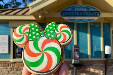 REVIEW: Minnie Peppermint Cookie and More Holiday Sweets & Treats at the 2020 Taste of EPCOT International Festival of the Holidays