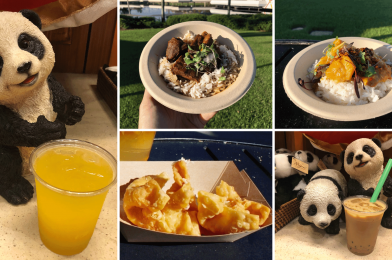 REVIEW: Shanghai Holiday Kitchen Brings New Beef Rice Bowl, Curry Chicken Bowl, and More for 2020 Taste of  EPCOT International Festival of the Holidays